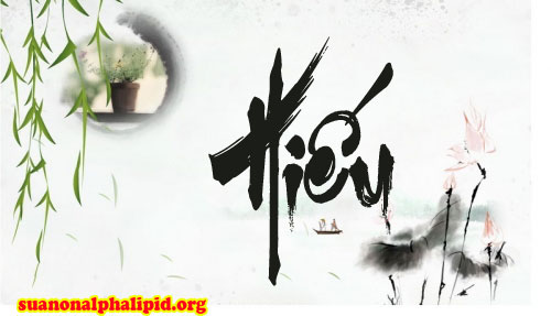 suanonalphalipid.org